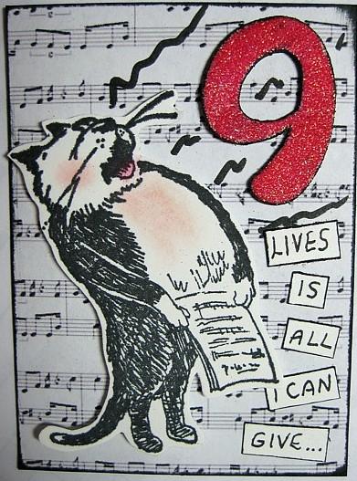 nine lives cat atc