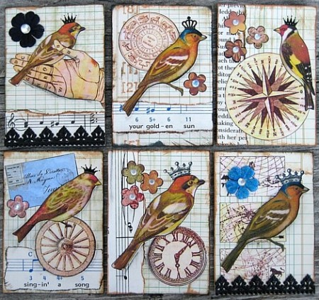royal birds sr