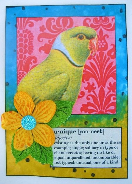 bird definition card